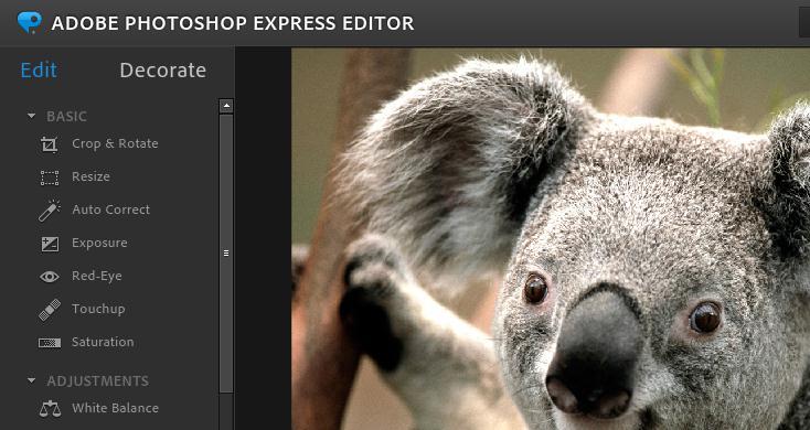 adobe photoshop expres