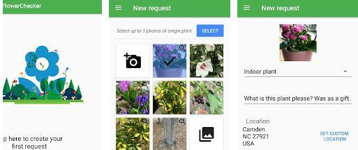 Aplicații de recunoscut plante Android sau iPhone FlowerChecker