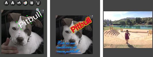 Aplicații de scris pe poze pentru Android sau iPhone Add Text to Photo