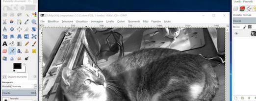 Programe de desenat pe calculator Windows sau Mac GIMP
