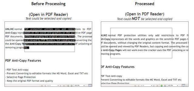 Program pentru protejarea unui document PDF - PDF Anti-Copy