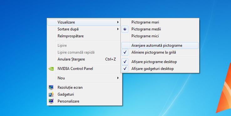 Aranjare pictograme desktop