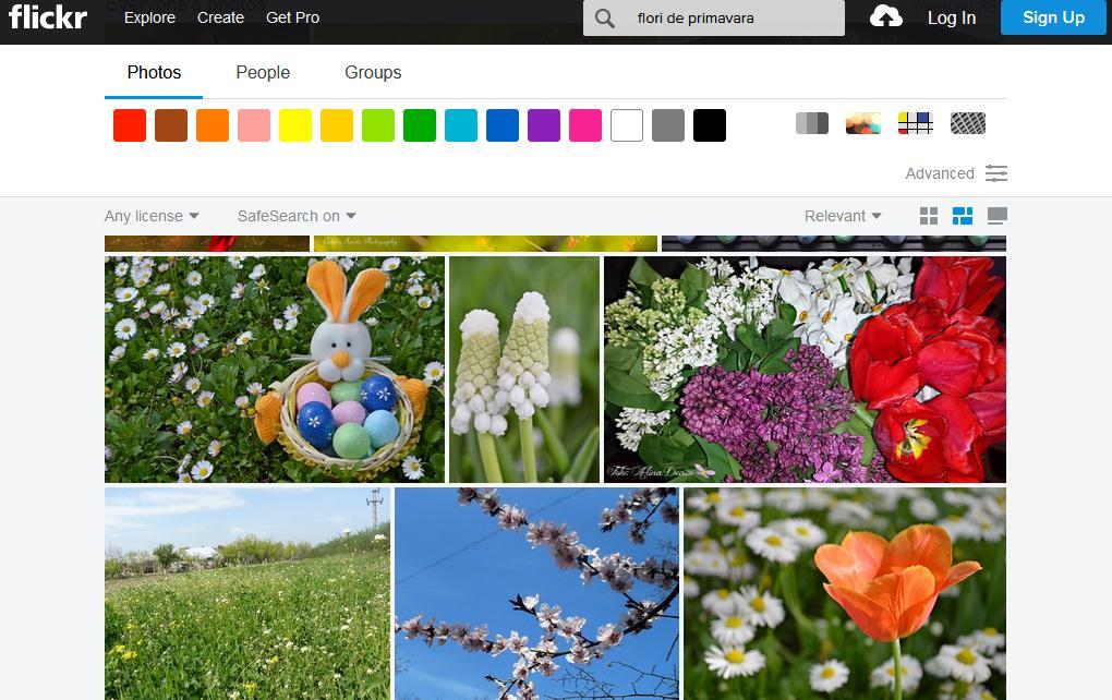 Imagini HD desktop Flickr
