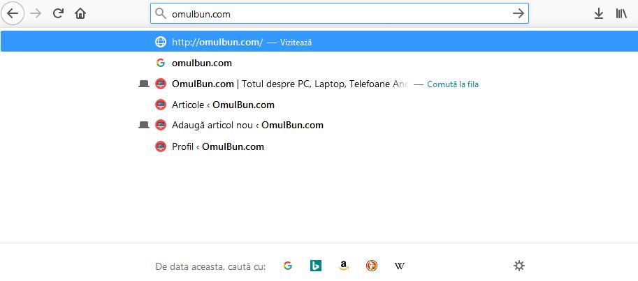 utilizarea browserului bara de adrese