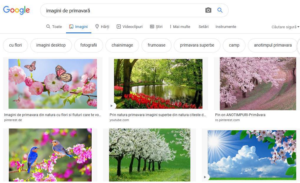 Caută o imagine pe Google sau alte site-uri